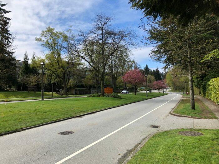 Promenadväg med mycket gräsnka