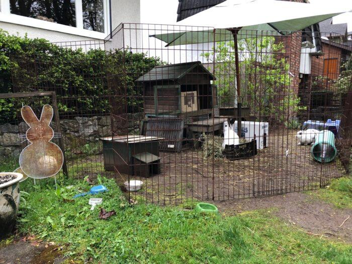 Kaninbur på framsida av hus