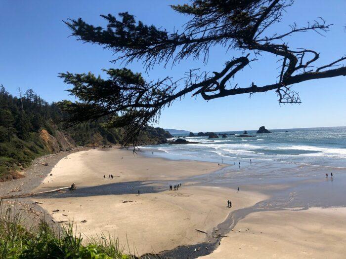 Utsikt över stranden Indian Beach